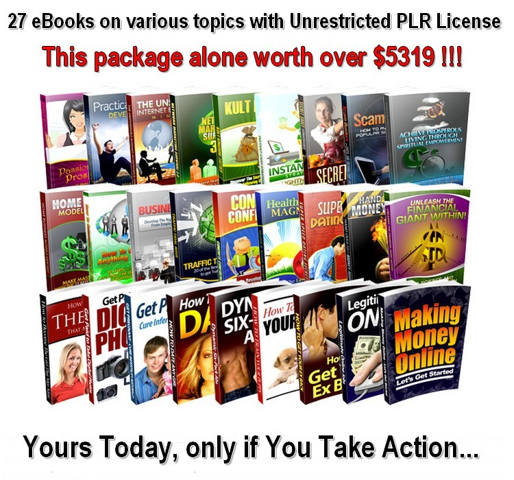 27 eBooks on various Topics with Unrestricted PLR License